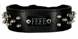 Spike Dog Collar with Name Plate Space