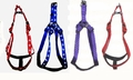 Kwik Step Padded Harness and Matching Leashes