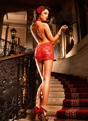 Red Rose Lace Mini Dress with Open Back