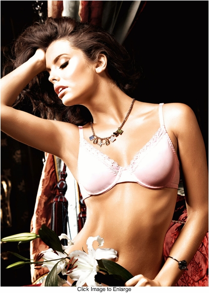Light Pink Microfiber And Lace Maximum Cleavage Bra With Underwire