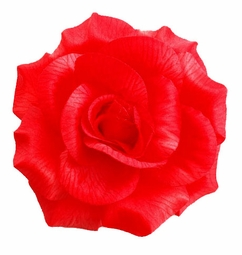 "Bold Red 5"" Flower Hair Clip for $5.00"