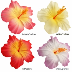 "3.5"" Hibiscus Flower Hair Clips for $9.00 Premium Quality Hair Clips in Vibrant Colors"