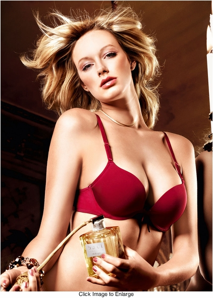 Bordeaux Red Padded Underwire Bra with Removable Straps