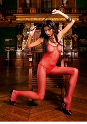 Red Fishnet Bodystocking with Open Back