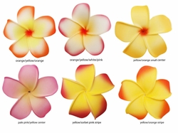 "2.5"" Classic Hawaiian Flower Hair Clip (6 tropical colors available)"
