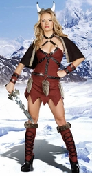 Viking Warrior Beauty Costume