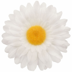 "3.25"" Gerber Daisy Flower Hair Clip (available in 29 colors)"