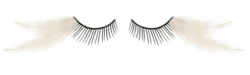 Feather Corner Lashes for $7.00