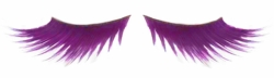 Purple Feathered Lashes for $7.00
