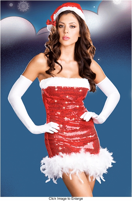 Sequin Miss Santa Christmas Costume