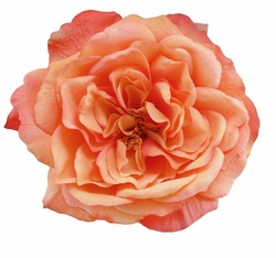 "5"" Large Heirloom Rose Flower Hair Clip"