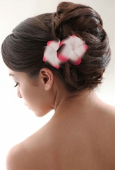 "3.5"" Double Plumeria Hawaiian Flower Hair Clip"