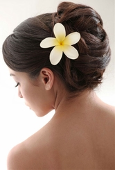 "3"" Plumeria Hawaiian Flower Hair Clip"