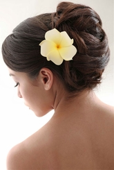"3"" Plumeria Hawaiian White/Yellow Flower Hair Clip"