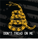 Clearance Ranger Up Don't Tread on Me Shirt