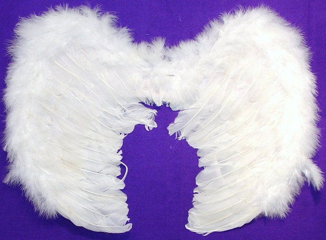 Angel Wings 20""