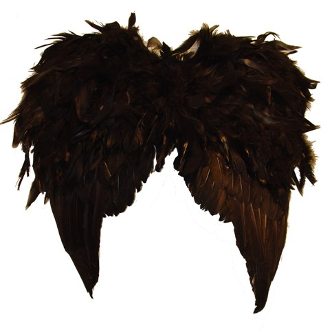 Black Angel Wings 20""