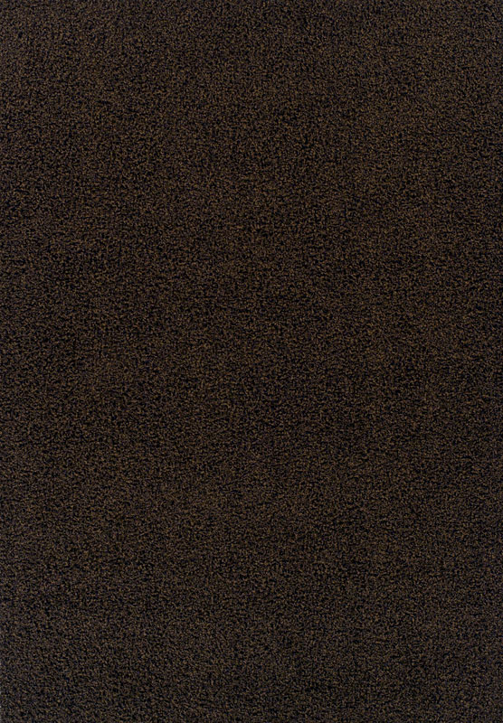 Dalyn Cz520 Chocolate Brown Modern Solid Shag 3x5 Area Rug