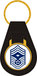 US Air Force E9 Chief Master Sgt. 1st Sgt. Key Fob