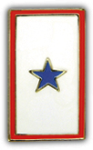 Service Banner - One Star Pin