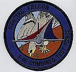 F-16 Combined Test Force Patch