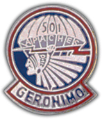 501st Airborne Pin