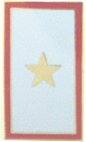 Service Banner - Gold Star Pin