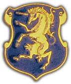 6th Cavalry Division Pin