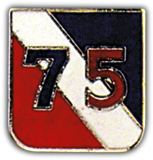 75th Infantry Division Pin