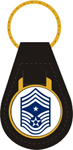 US Air Force E9 Command Chief Master Sgt. Key Fob