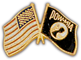 POW*MIA/USA Flag Pin
