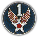 Air Force Unit - Old Pins