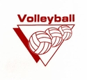 Volleyball Triangle Discount T-Shirt