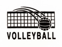 Volleyball w/ Net Discount T-Shirt