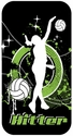 Volleyball Hitter iPhone 4 / 4S Phone Case