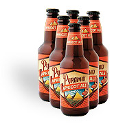 Pyramid Brewing Apricot Weizen Ale 6 pack