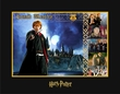 Ron Weasley - Warner Bros. By Clampett Studios