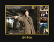 Remus Lupin - Warner Bros. By Clampett Studios