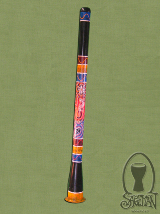 Painted Slider Digeridoo