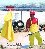 Squall Line-Day Labor/Clean-Ups, Gen. Maintenance/Prisons/Theme Parks
