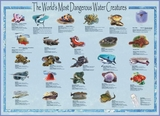 Dangerous Water Creatures Poster