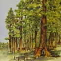 Yosemite: Giant Sequoias 12 x 12 Double-Sided Cardstock