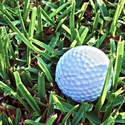 Sportsmanship: Golf Ball on Grass 12 x 12 Paper