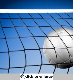 Sportsmanship: Volleyball Hitting Net 12 x 12 Paper
