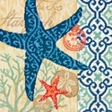 Starfish Dimensions Needlework