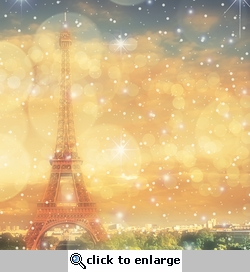 Paris Sparkle 12 x 12 Paper