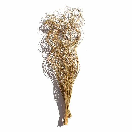 "Bulk Curly Ting Ting Glittered Gold 30""  <BR>5 big bunches of 25 stems!"