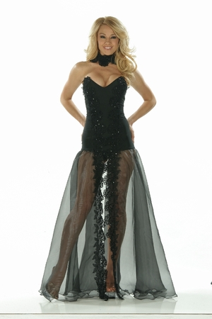 Lycra/Organza/Sequin Lace Gown * 4861