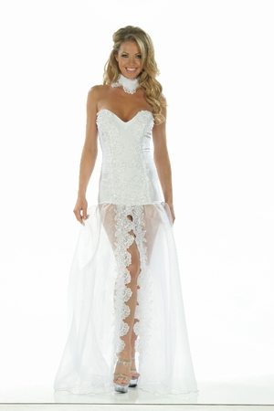 Lycra/Organza/Sequin Lace Gown * 4862