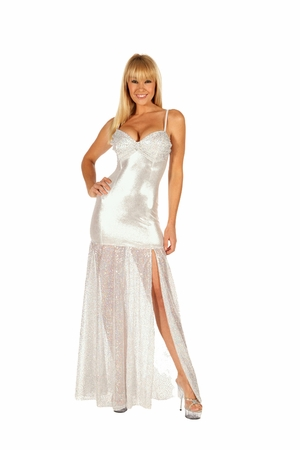 Sequined Mesh Gown * 5505